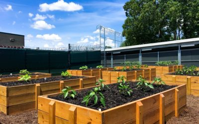 Horticulturist Program at Chesapeake Correctional Facility